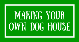 Making Your Own Dog House